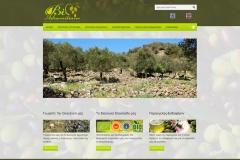 www.bioadramitiano.gr
