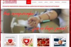 www.seamytilinis.gr